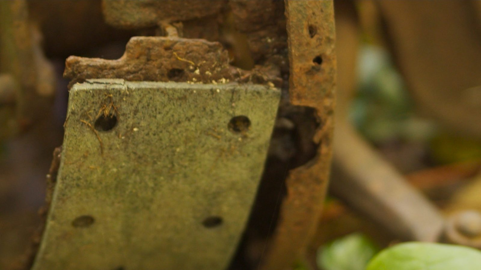 Still from Matthias' Lockdown Adventure car ruins in forest